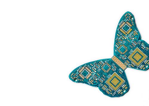 butterfly chip_v3''